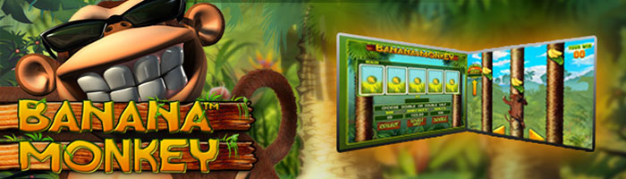 Jungle Boogie Slot - Play Online for Free Instantly
